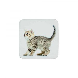 Onderzetters Kitten (Set van 6)
